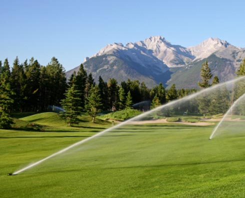 turf-irrigation